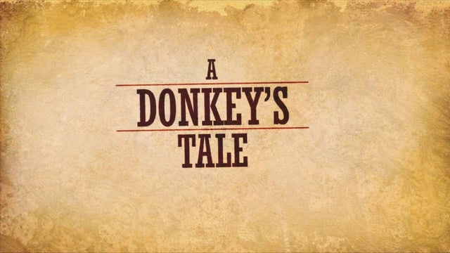 A Donkey's Tale – Animated Illustration